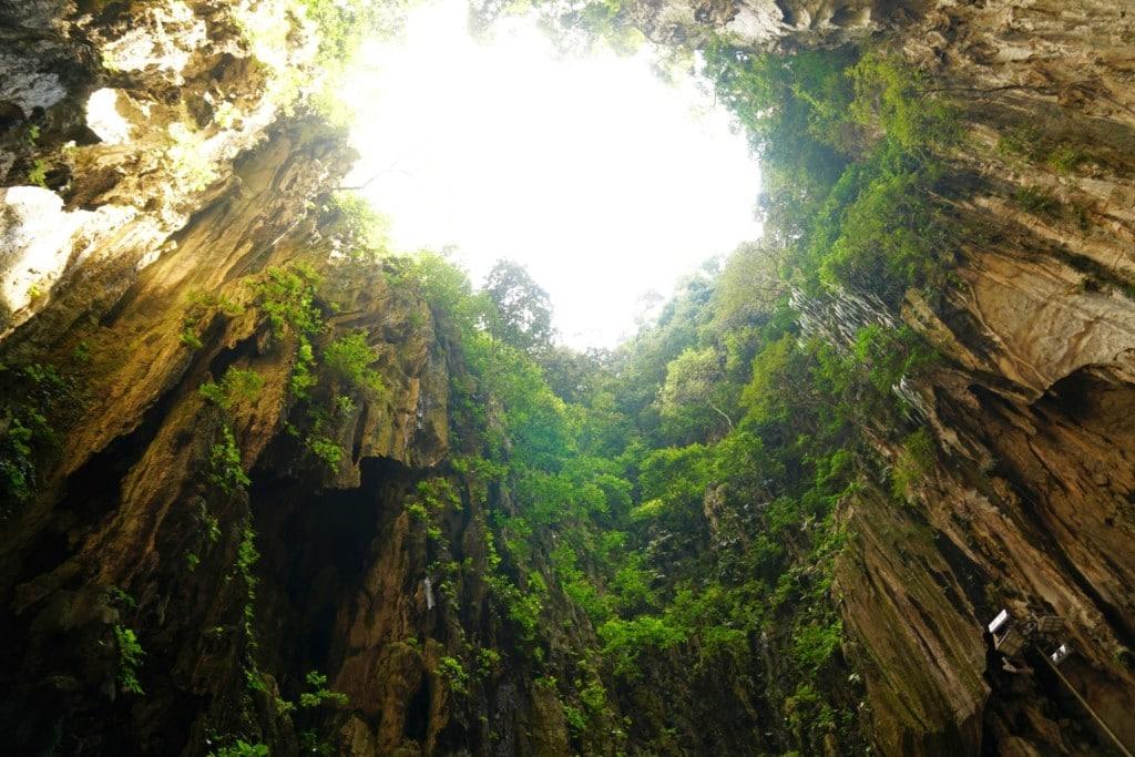 Lichtung Kalksteinhöhle