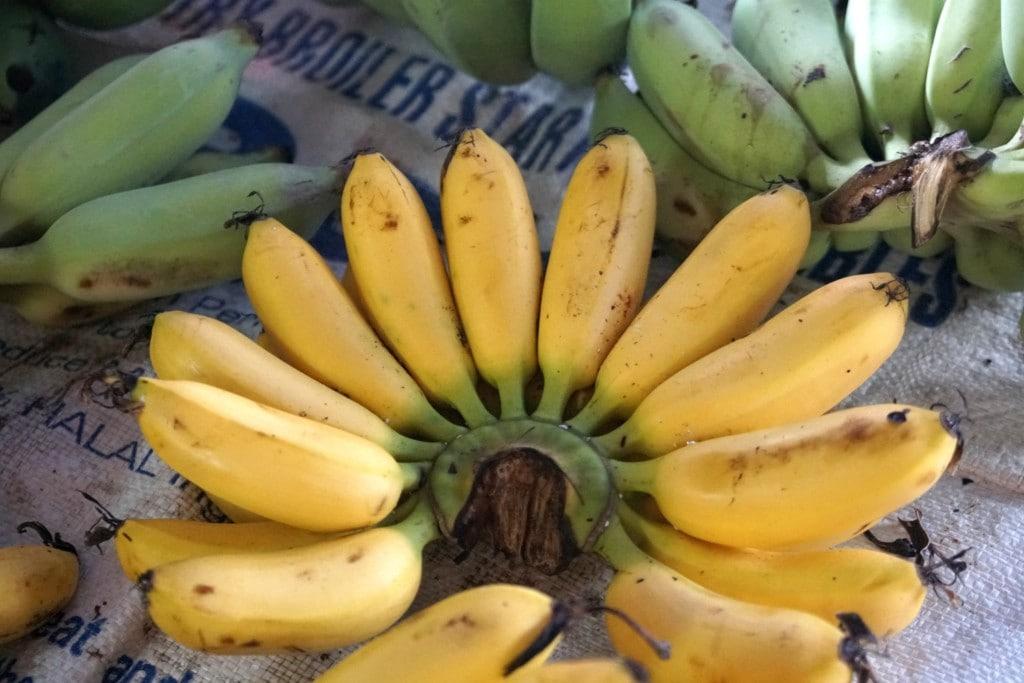 Saba Bananen