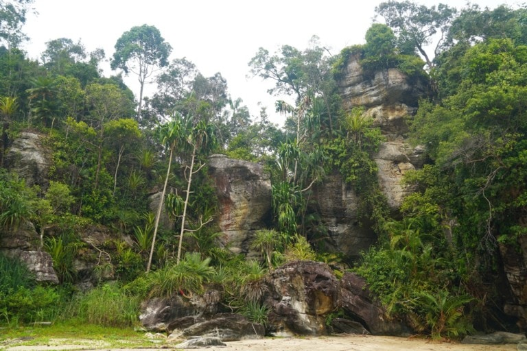 Bako National Park Titel
