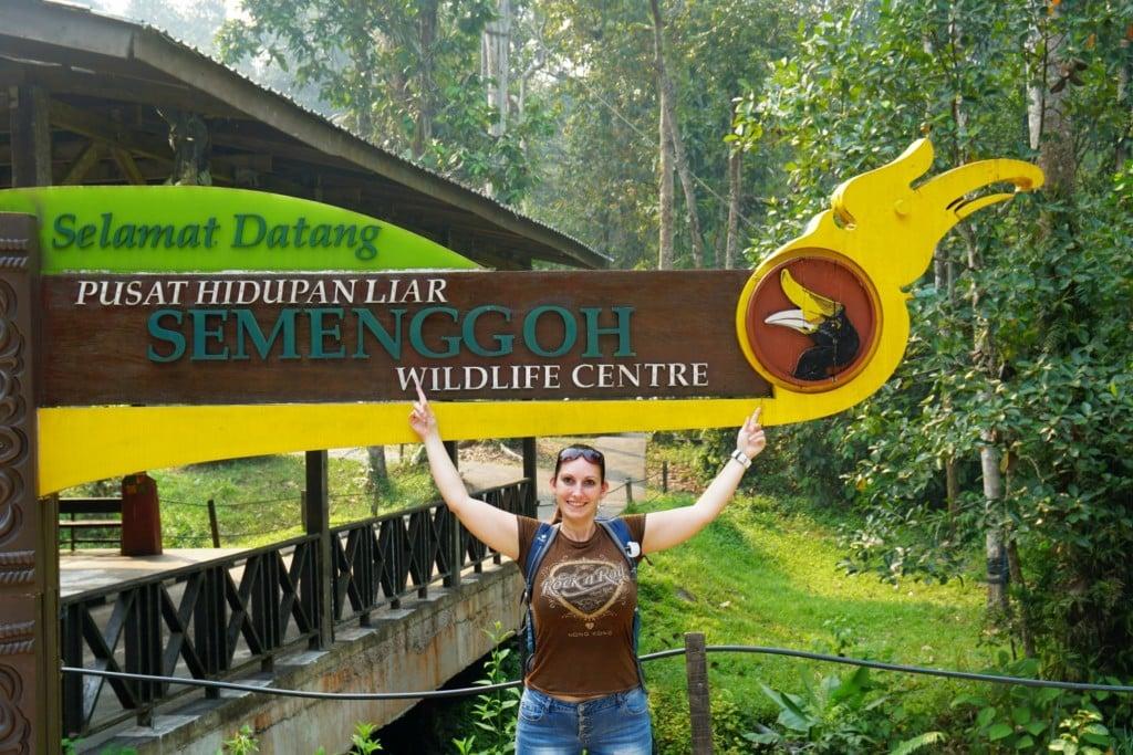 Semenggoh Wildlife Centre Fernschmecker