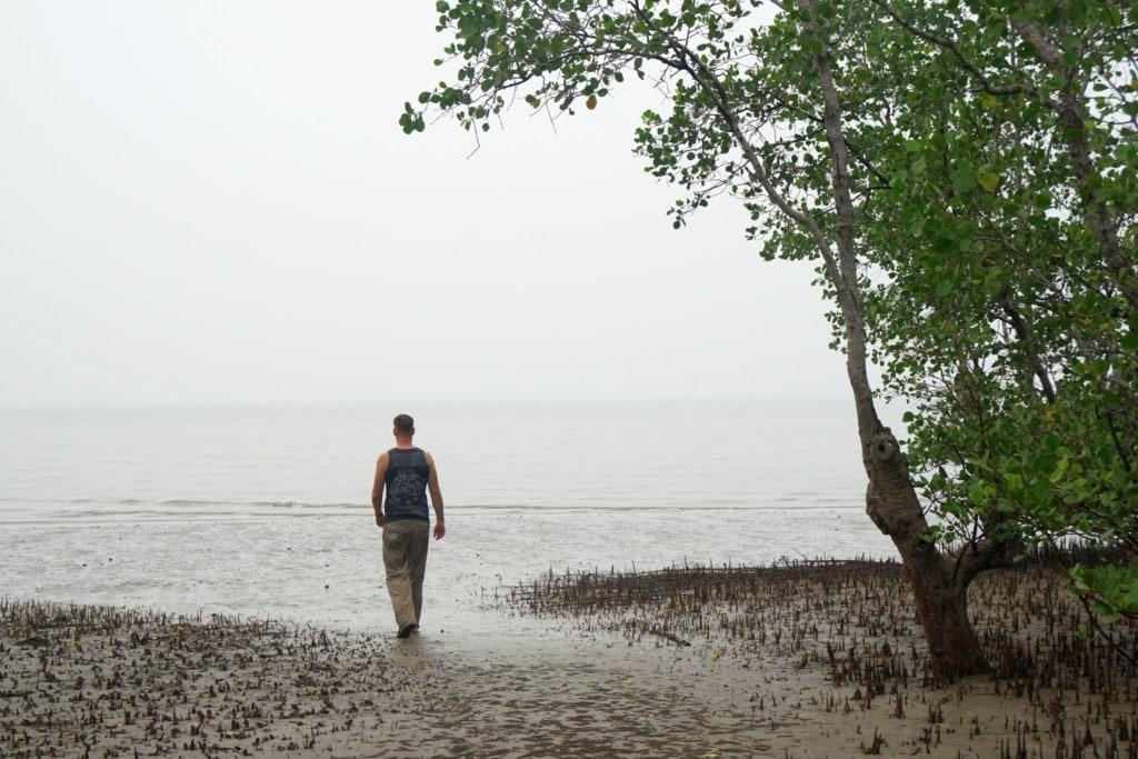Teluk Delima Mangroven