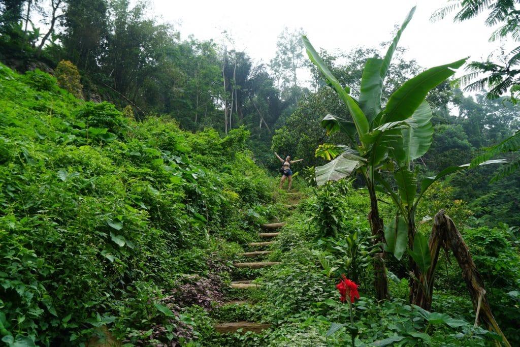 Tirta Buana Wasserfall Dschungel