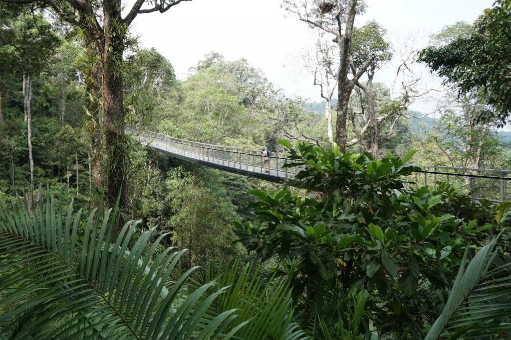 Hängebrücke Penang Hill