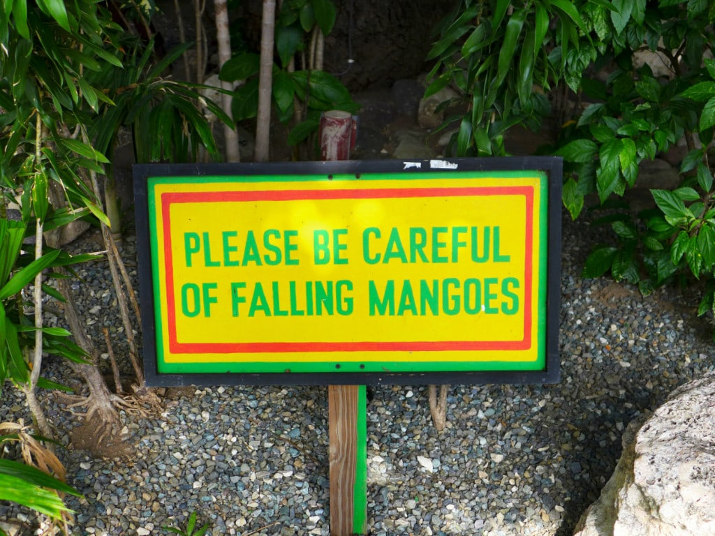 Hinweisschild herabfallende Mangos