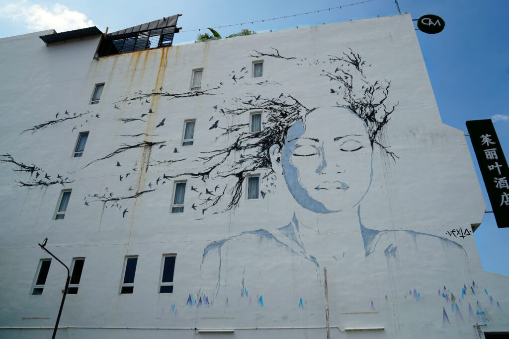 The Girl with the Tree Hair Streetart
